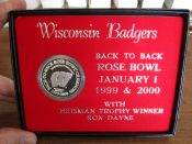 Wisconsin Badgers Back To Back Rose Bowl Champs Solid Silver 1 Ounce Coin